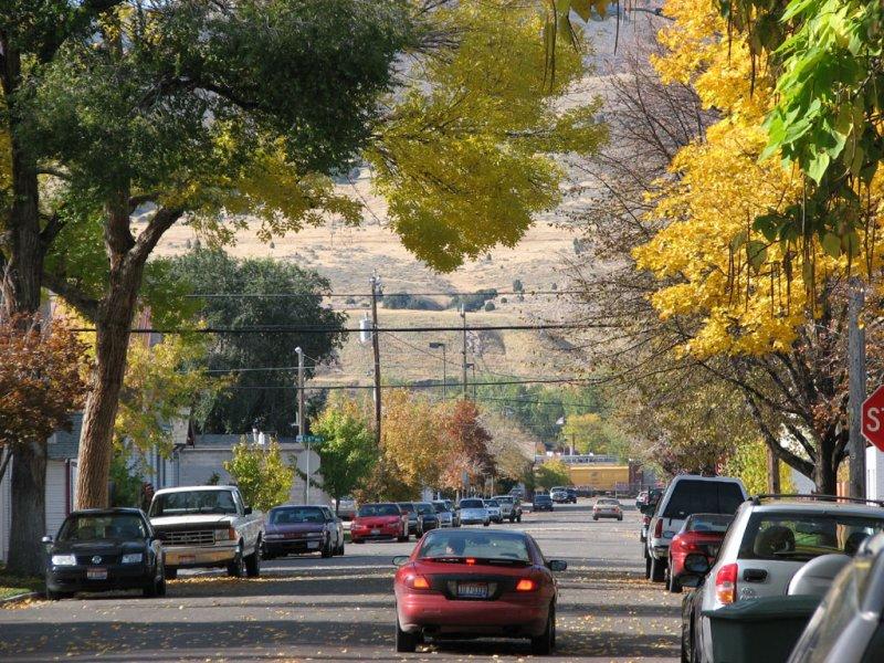 Whitman Street Autumn Scene smallfile IMG_1381.jpg
