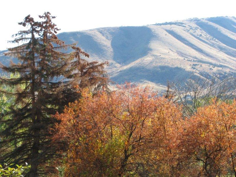 Autumn at Pocatello Zoo smallfile IMG_1468.jpg