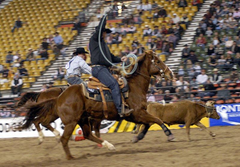 Rodeo 2007 _DSC0486.jpg