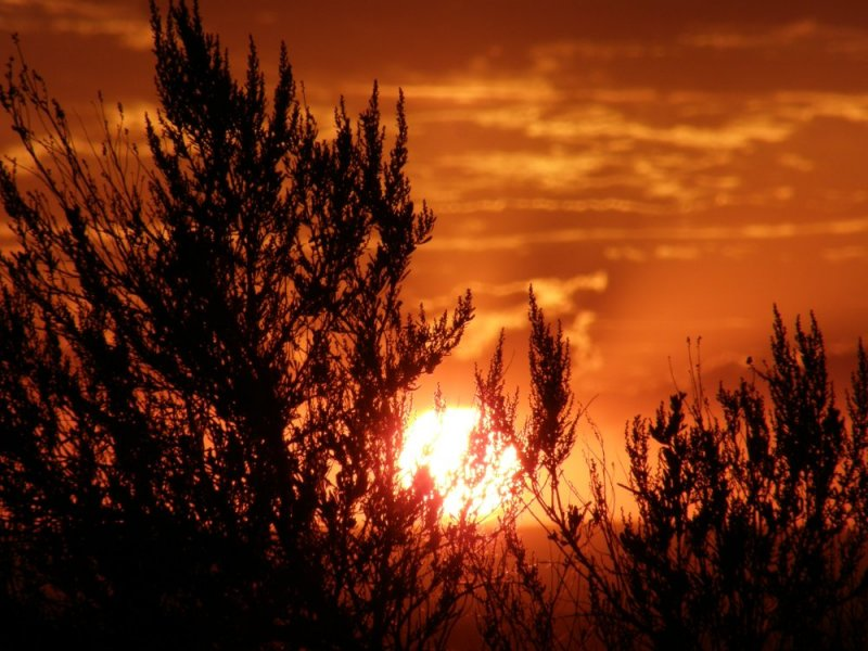 Pocatello Sunset smallfile P7290072.jpg