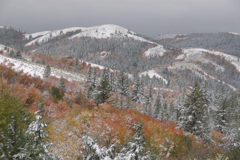 Pocatello Autumn Scene with Snow _DSC0111_2.jpg