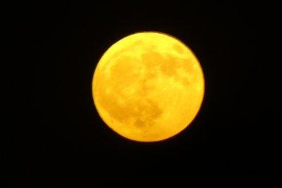 Lua / \ Moon