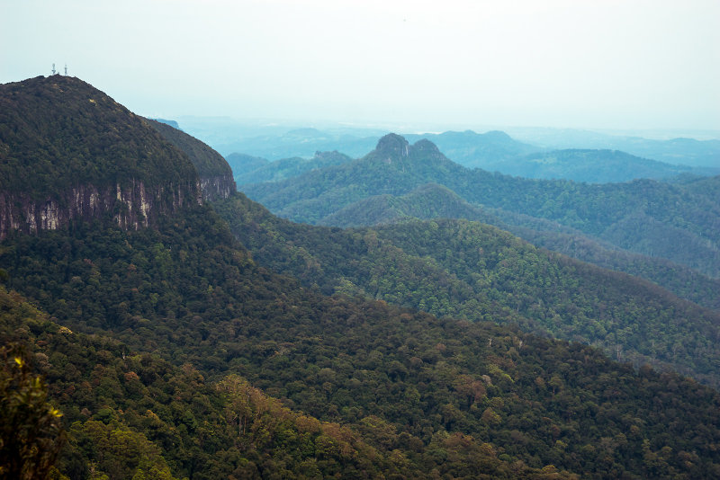 Look out at Springbrook National Park
