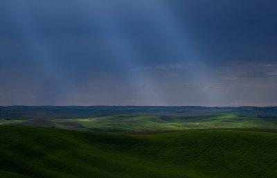 Natures spotlights