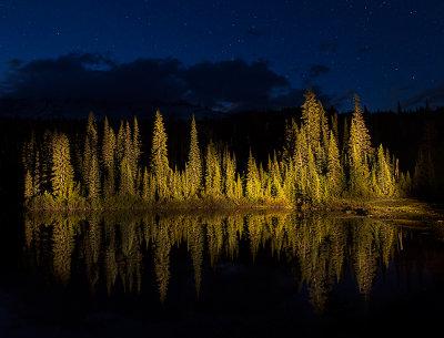 Mt. Rainier  Reflection Lake