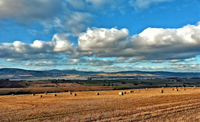 Looking over the Cromarty firth