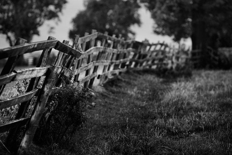 20130817 - Fenced