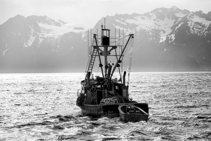 Prince William Sound. Near Valdez, AK. .jpg