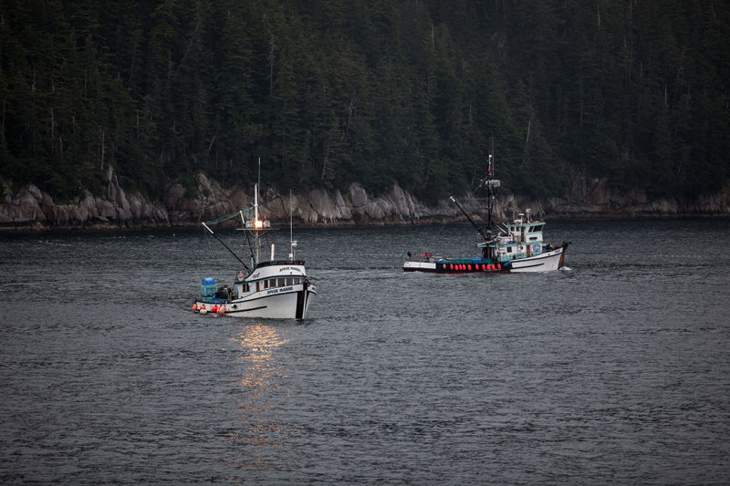 Prince William Sound. Near Valdez, AK. IMG_5707.jpg