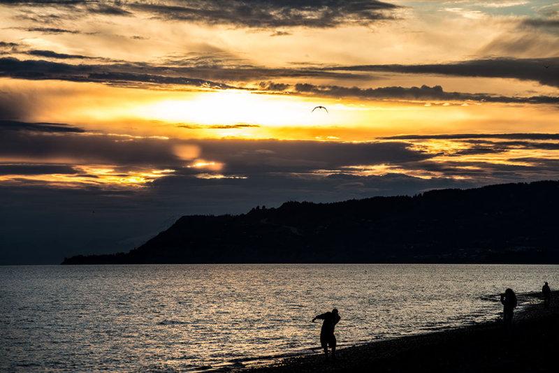 Skipping rocks on the bay by Homer, Alaska. CZ2A0190.jpg