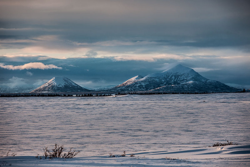 Tundra and mountains. IMG_5861.jpg