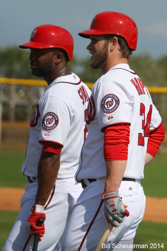 Span and Harper