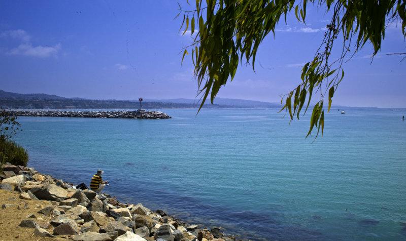 Morning, Dana Point Harbor