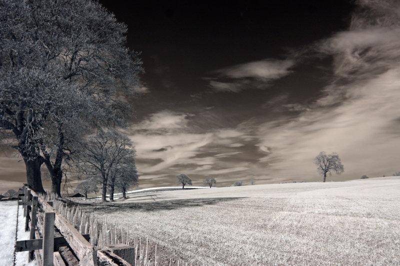 IR Countryside