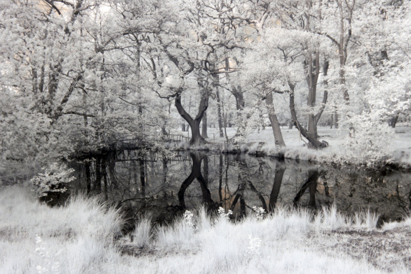 IR Relections