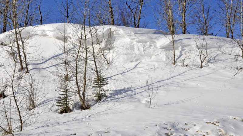 _DSC0011jp.jpg  Snow Drifts on the Prairies