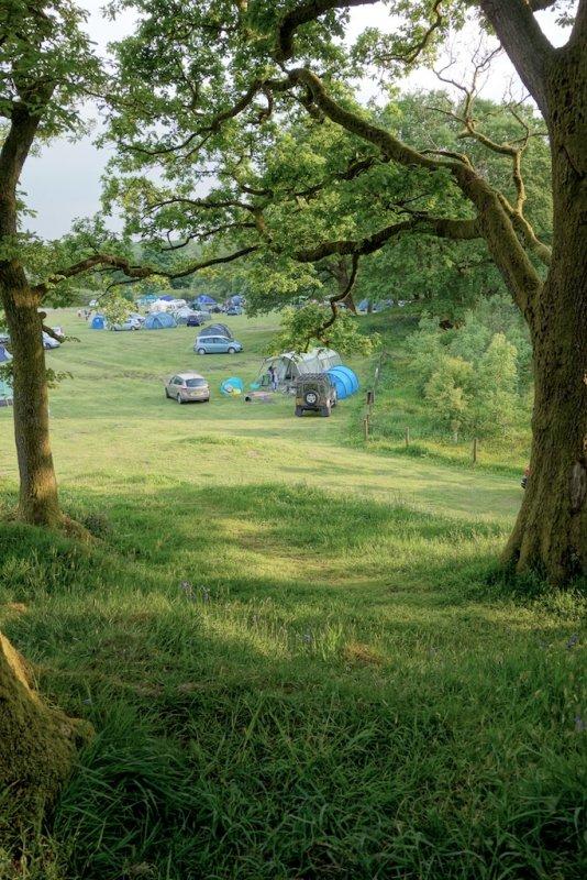 Grizedale Campsite