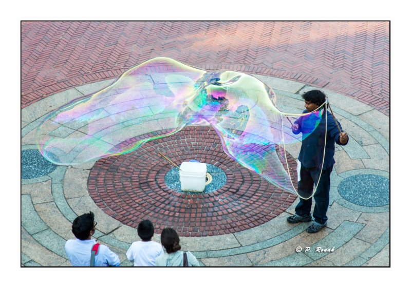 Bubble at The Mall - New York - 8180