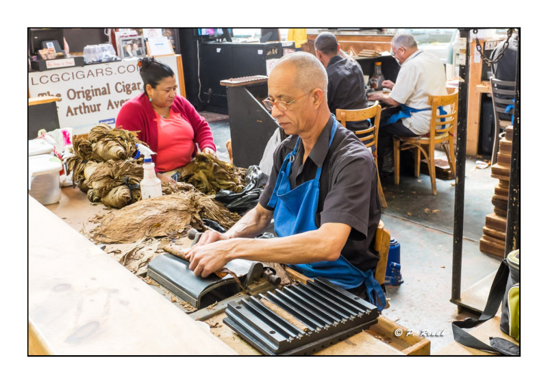 Cigar Factory - Little Italy of the Bronx - New York - 2443