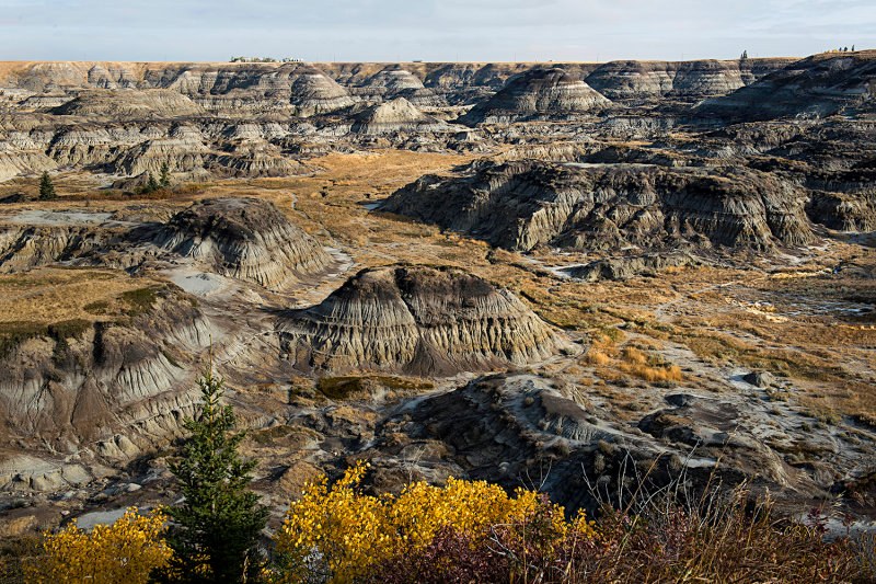Horseshoe Canyon (near Drumheller, Alberta)