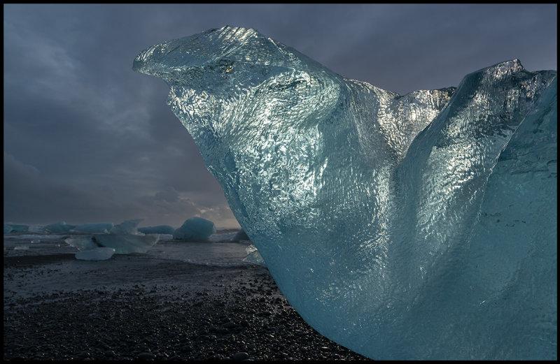 Ice bird melting at the beach near Jökulsarlon