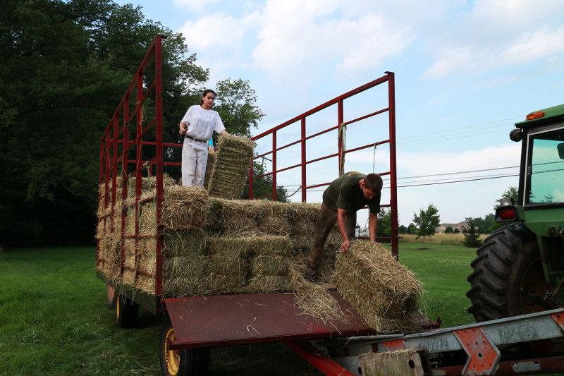 IMG_0182_Unloading hay ...