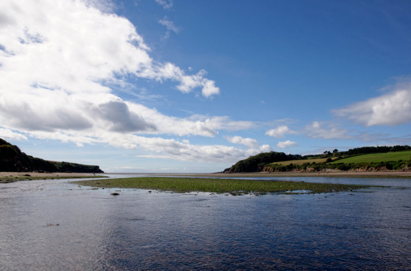 Erme estuary from the middle at low tide
