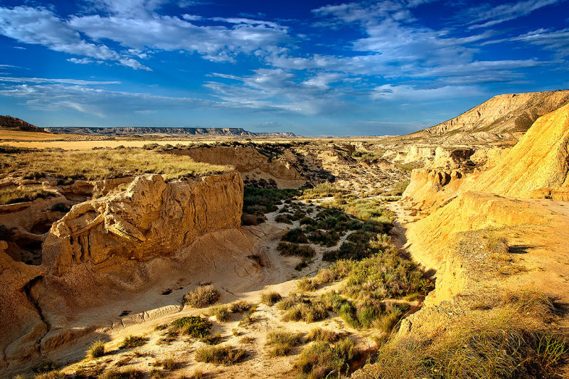 Dried up river bed, Bardenas Reales