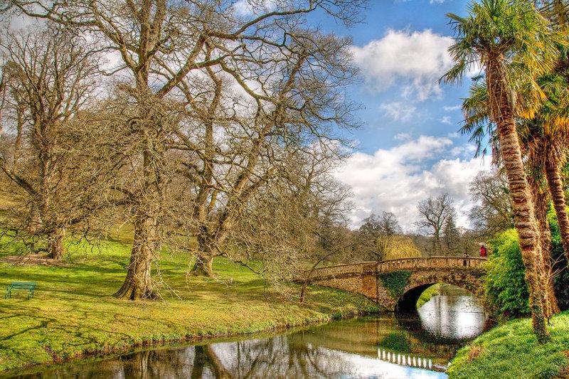 Bridge and trees, Minterne Gardens, Dorset (3400)