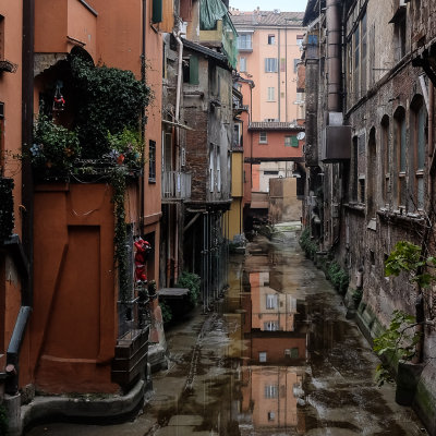 Bologna - The Old Canal
