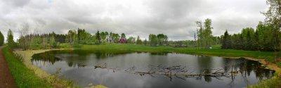 Southview pond10.jpg