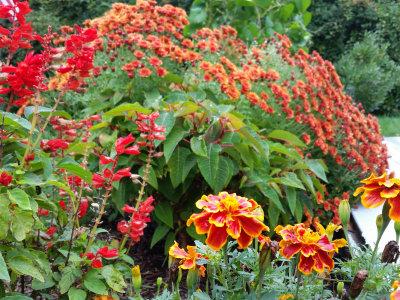 October Garden