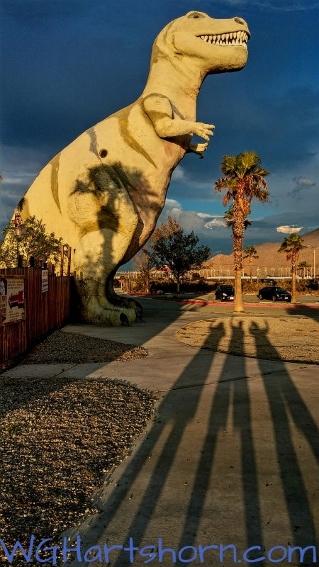 Cabazon TRex Shadows