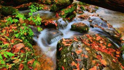 Rushing Water, North Carolina