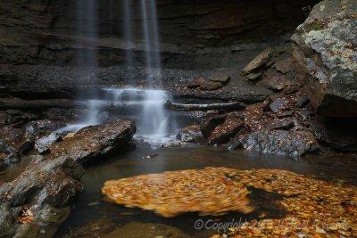 Swirling Leaves, Cucumber Falls
