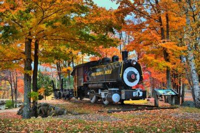 East Branch and Lincoln Logging Locomotive, White Mountain, New Hampshire