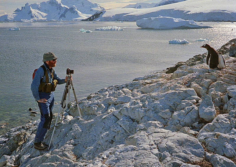 W.-photographing-Gentoo-Penguins