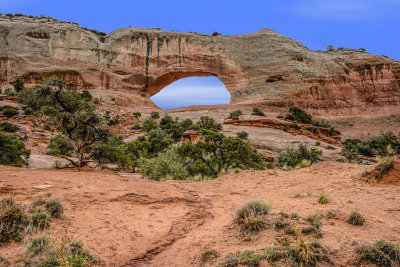 Arches in canyonlands