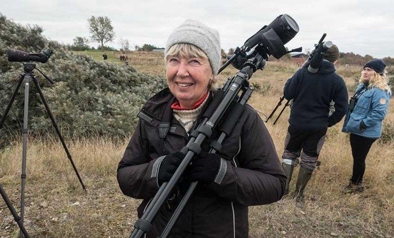 Ann Karlsson