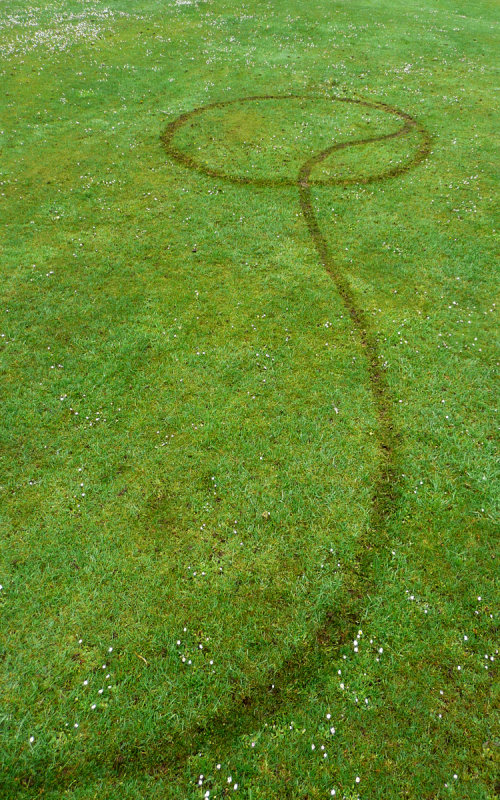 Q Tyre marks
