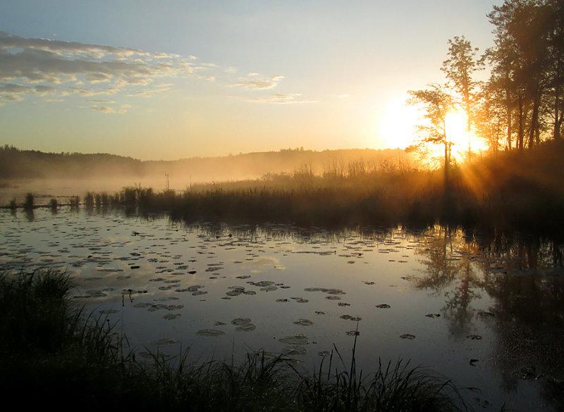 Wetland Sunrise 0422