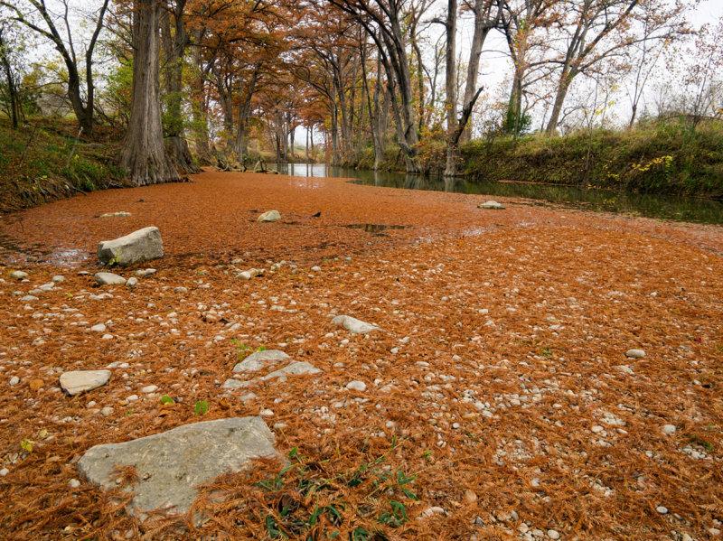 Drought 24 - Fall 2013