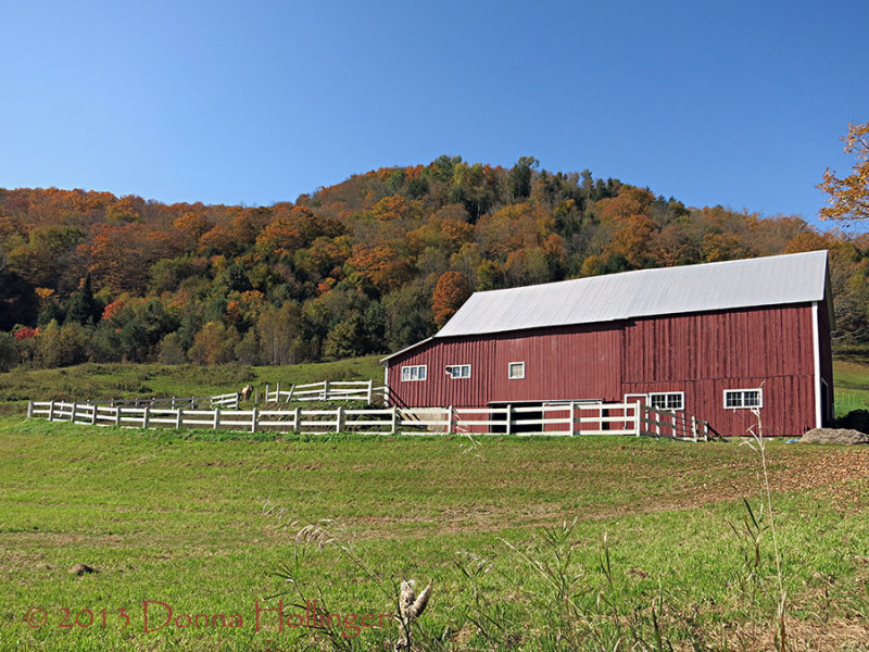 Nice Horse Barn!