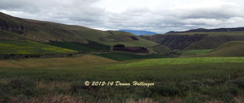 Farm Lands near Papallacta