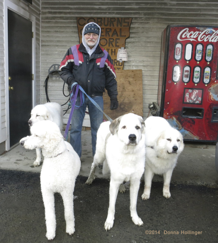 Lee V. Enjoying Maries Dogs