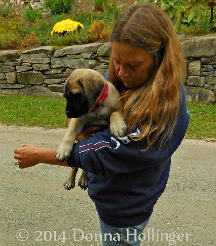 Renes Puppy:  Marley