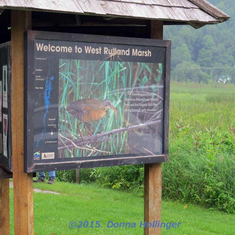 Rutland Wetlands Important Birding Area