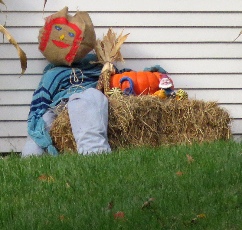 Scarecrow head By Flora