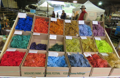 Wool Festival At Tunbridge Fairgrounds in October, 2016