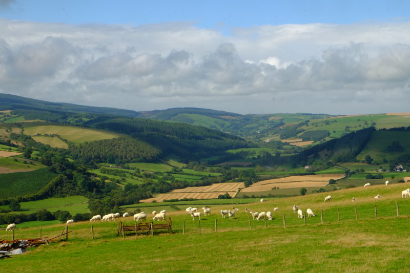 Looking  up  the  valley  of  the  River  Lugg , towards  Pilleth.